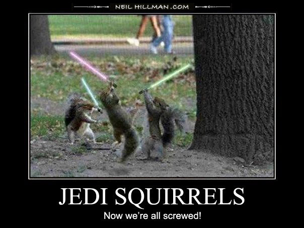 Demotivational poster jedi squirrels