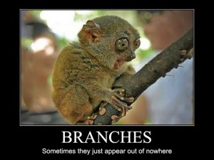 Branches – Sometimes they just appear out of nowhere