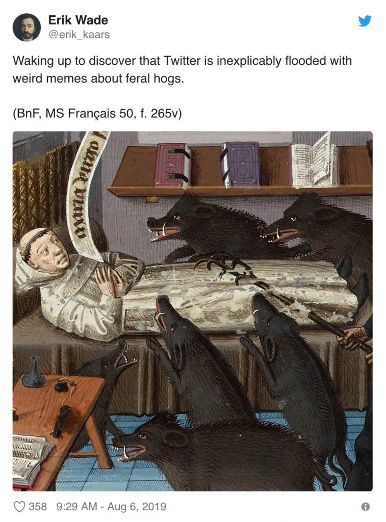 """""""30-50 feral hogs"""" meme — by Neil Hillman"""