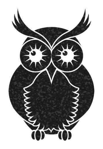 B&W Owl logo commissioned